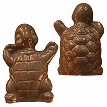 A55 Turtle Mold