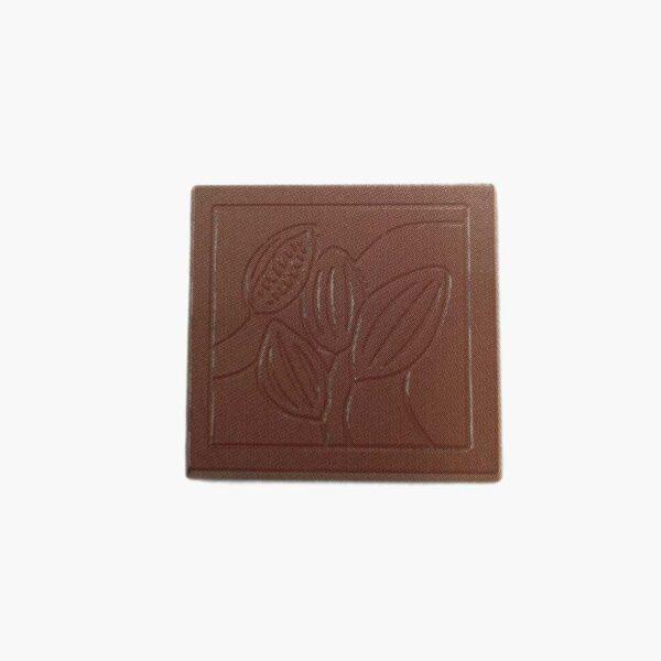 Moule chocolat caraque motif cabosse