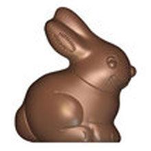 Rabbit Double Mold