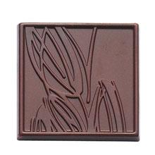 Moule chocolat carré dégustation cabosse