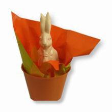 Seau coloré de printemps avec des feuilles cello - Orange