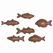 Assortiments de poissons