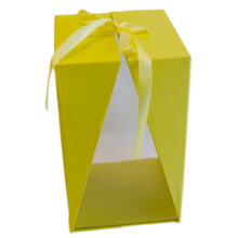 Yellow box with window, T1 (1)