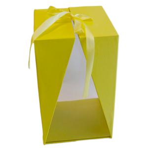 Boite jaune a fenêtre,T1 (1)
