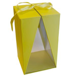 Boite jaune a fenêtre, T2 (1)