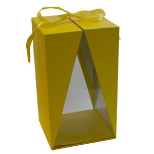 Boite jaune a fenêtre, T3 (1)