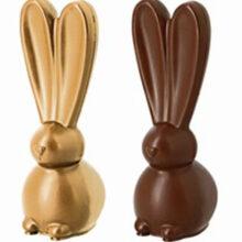 Big-Eared Rabbit  Mold