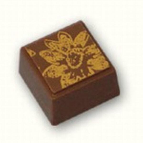 Square Chocolate Mold (X1114)