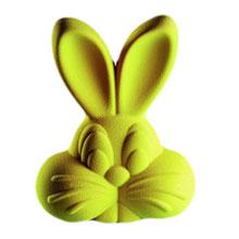 """Roger Bunny"" mold"