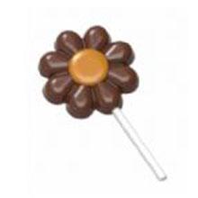 Flower lolly