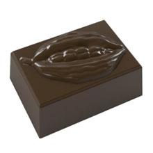 Chocolate Cocoa Pod Mold