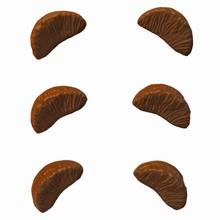 Moule tranches de tangerine (CC-F92)