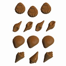 Moule coquillages assortis (CC-A87)